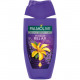 Palmolive Dusch 250ml Aroma Sensations Absolute