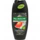Palmolive Dusch 250 ml para los hombres energizant