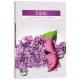 Theelichtgeur 6er lila in gekleurde vouwschacht