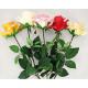 Rose 68cm ouvert fleur extra long, 5 couleurs sort