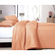 Satin Point Pastel Orange 200 x 220 Orange
