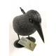 gołębie Rabe Vogelschreck