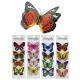 Dekosticker Papillon 4 pièces sur la carte - ca