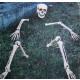 Skeletal onderdelen voor gazon decoratie