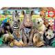 Puzzle Educa 300 szt Animale klasa foto photo