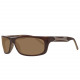 Skechers Sunglasses SE8001 K20 62