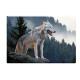 Photo magnet wolf, 5.5x8cm