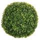 buxus bal d28, groen