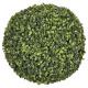 buxus bal d38, groen