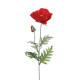 poppy stalk h70, red