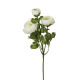 buttercup stem white h60, white