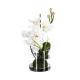 comp orchidee florero vr h37, 2- veces surtido , c