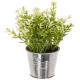 plante artif pot zinc d8xh17, 3-fois assorti, gris