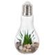 plante artif ampoule led h18.5, 3-fois assorti, tr