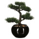 bonsai artif pot ceramic h36, black