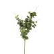 tige eucalyptus h91, vert