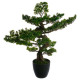 bonsai artif h80, green