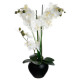 orchidee ceramic vase black h.53, black