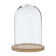 bell glass wood base h26, transparent