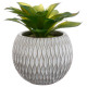 oily plant pot cement h17, 2- times assorted , gre