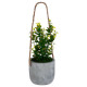 planta artif pot cement h25, 2- veces surtido , ve