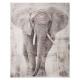 lienzo impreso 38x48x1,8 elefante, multicolor