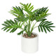 palm tree cim blc etnik h29, white