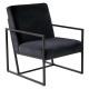 fauteuil velvet eigentijds zwart, zwart