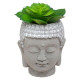 cim buddha artificial plant, 3- times assorted , g