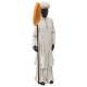Afrikaans harsbeeld h30, veelkleurig