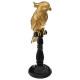 gouden hars papegaai h33 pauw, goud