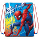 Sports Bags Spiderman , Spiderman 41 cm