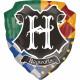 Harry Potter Foil Balloons