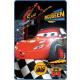 Polar Duvert Disney Cars , Duvert 100 * 150cm
