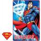 Polar Duvert Superman 100 * 150cm