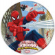 Spiderman , Spiderman Paper Plate 8 x 23 cm