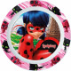Miraculous Ladybug micro flat plate