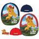 Disney The Lion Guard, The Lion Guard