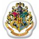 Poduszka Harry Potter, poduszka dekoracyjna 35 * 3
