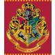 Harry Potter plush Duvert 120 * 150cm