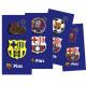 Futbol - Pack 2 Pins FCBARCELONA