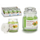 jar candle with lid small fusion fruit