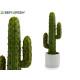 straight plastic cactus 1 trunk 36cm