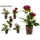 pink plastic flower pot 2 flowers 31cm surt6