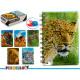 bloc-notes a6 top animaux 3d 6 fois assorti 196 pá