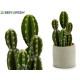 Kunststoff Kaktus Stacheln Breite 29cm