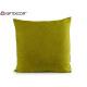 cushion canvas 60x60 green pistachio