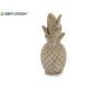 ananas di pietra sbiancato
