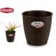 pot de fleurs naturel chocolats inter / exter 19di