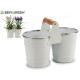 doppelter weißer Blumenkasten Silberrand